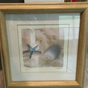 """Other - Framed Shell Print 11-3/4"""" X 11-3/4"""""""